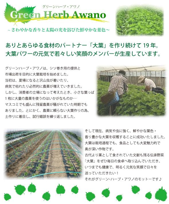 awano_shokai.jpg